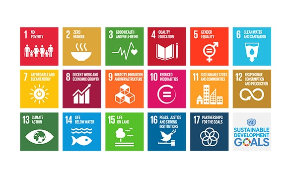 Illustration of the 17 goals of the 2030 Agenda for Sustainable Development.