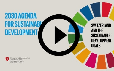 Symbolic Image leading to video about sustainable goals.