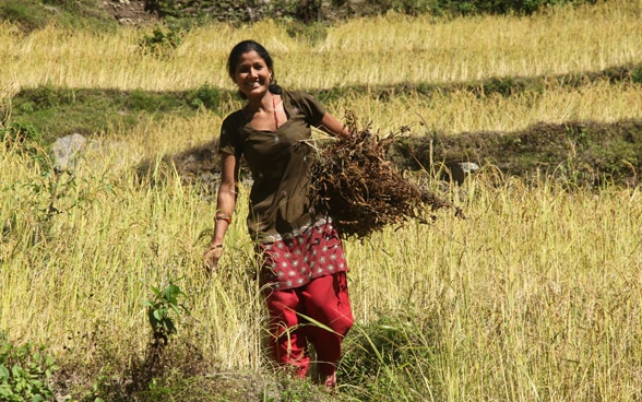A female of Okhaldhunga district with her harvest.
