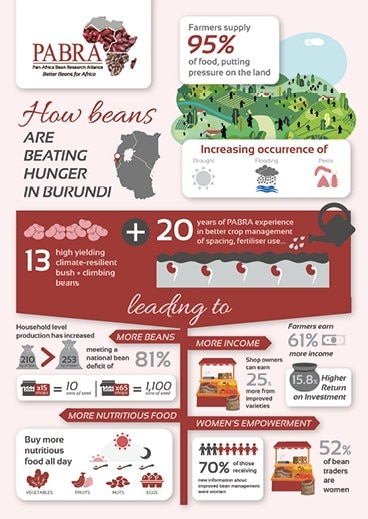 Infographic on the PABRA project in Burundi.
