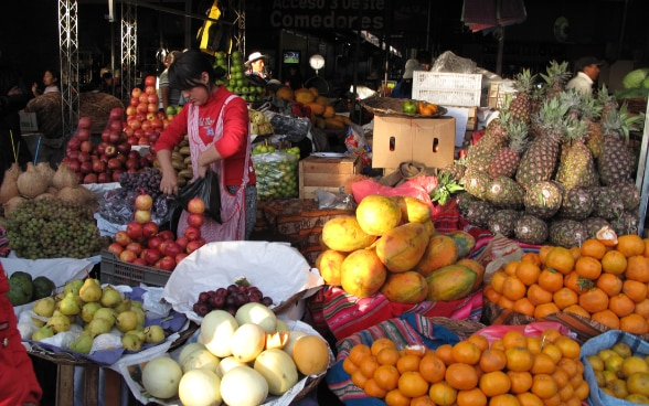 A woman stacking apples in a market with a rich selection of fruits and vegetables