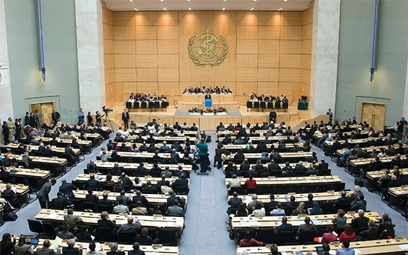 World Health Organisation assembly in Geneva