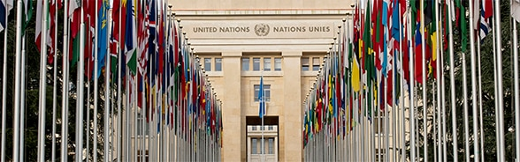 flags of the United Nations member states flying in front of the Palais des Nations in Geneva in 2014