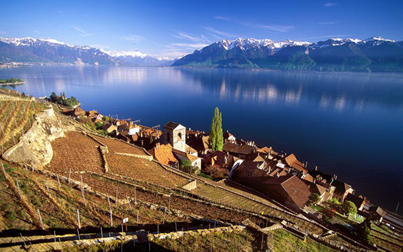 View of the Lavaux vineyards on the shores of Lake Geneva