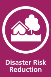 Disaster Ris Reduction DRR