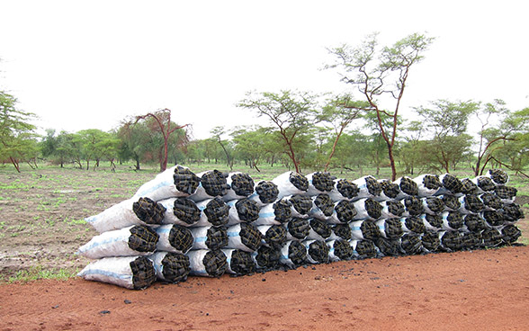 Charcoal sacks by the side of a road.