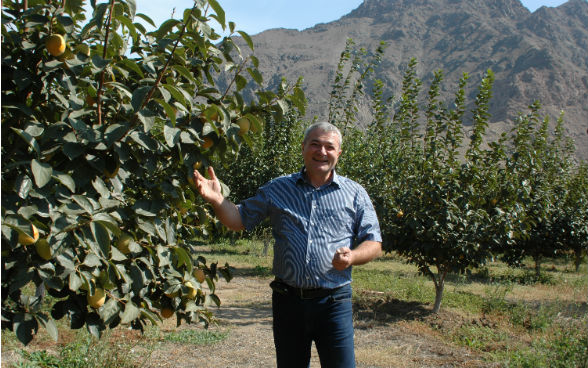 The picture shows an Armenian producer standing next to one of his fruit trees.